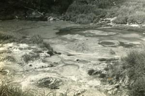 八幡平大沼2