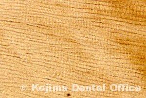 歯牙組織4